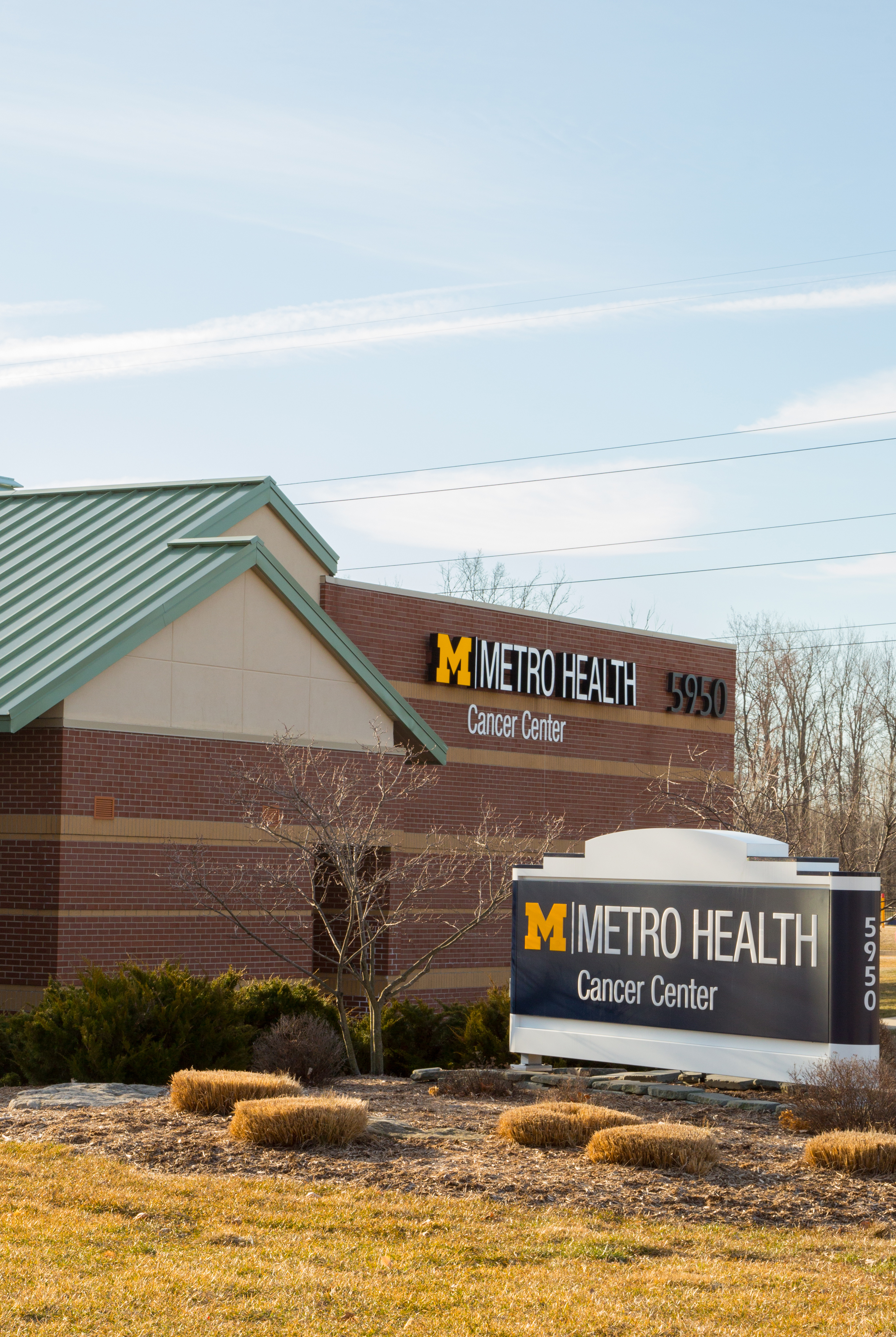 Rheumatology Physician at Metro Health - University of Michigan Health