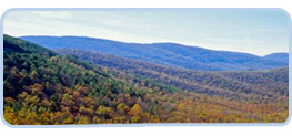 Northern Virginia Image
