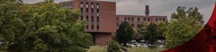 UoL Health - Peace Hospital Image