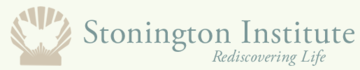 Stonington Institute Logo