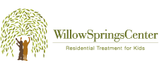 Willow Springs Center Logo
