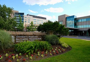 University of Maryland Baltimore Washington Medical Center Image