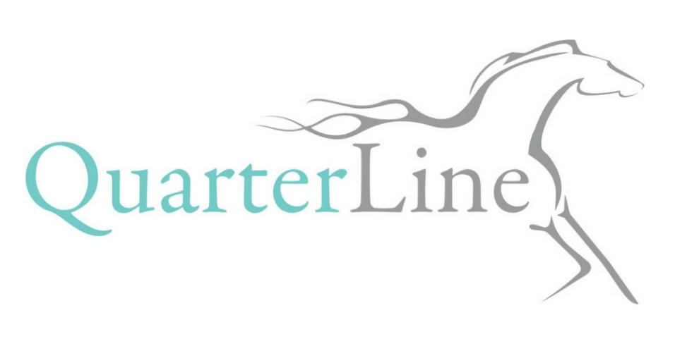 Quarterline Consulting Services, LLC Logo