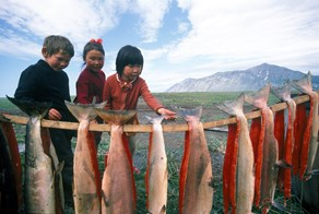 Rural Alaska: $240,408 Employed Salary, Sign on $60,000/Loan Repayment Image