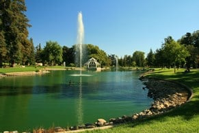 Busy, Well Established, Private Practice in Suburban Northern California! Image