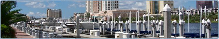 TeamHealth - Tampa, FL Image