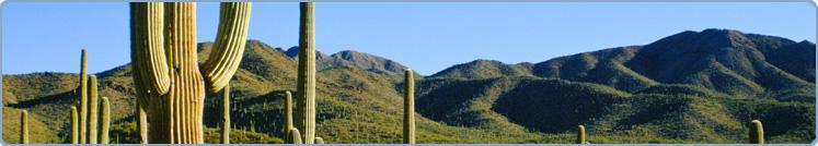 TeamHealth - Tucson, AZ Image